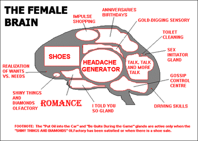 Female Brain
