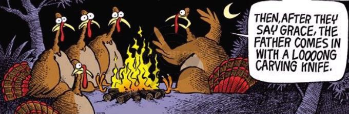 Image Gallery Bad Turkey