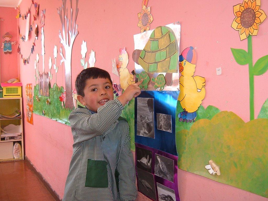 Jardin infantil las abejitas felipe diserto sobre las for Aprendemos jugando jardin infantil