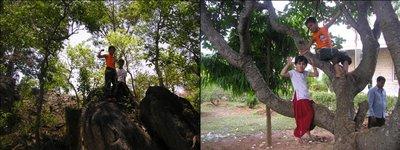 TG Halli Lush greenery