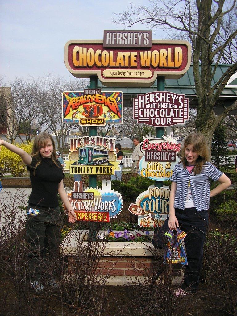 Chocolate World Hours - Pumpkin Chocolate Chip Cookies
