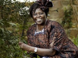 wangari maathai essay essay Maathai did many things to improve the environment, one of which was founding the greenbelt movement the green belt movement is an organization that promotes and awards the planting of green belts to stop soil erosion, provide shade and create a source of lumber and fire wood.