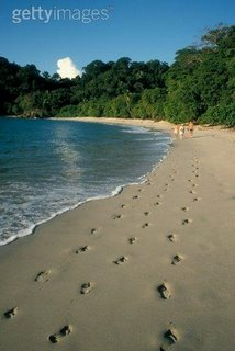 Costa Rica, Manuel Antonio National Park, people walking down beach. Rear view. (Photo by Getty images)