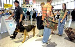 The increased security was visible at Juan Santamaria International. Photo by Insidecostarica.com