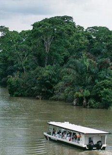 The Channels of Tortuguero