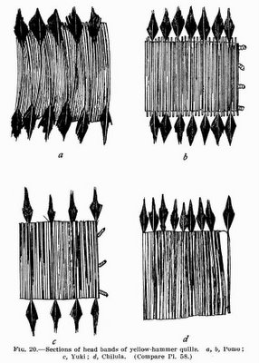 Fig. 20: Sections of head bands of yellow-hammer quills: Pomo; Yuki; Chilula.