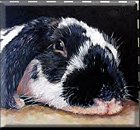 Kathie McCollough - Fab Rabbit Artist