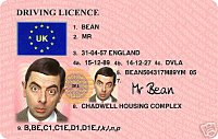 Mr Bean licence