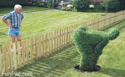 Rude neighbour