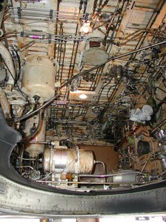 Air New Zealand B737 Inside the right-main gear retraction bay