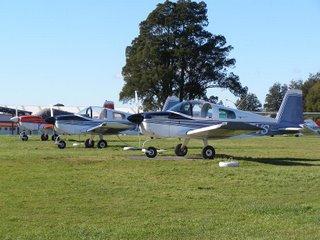 Grumman AA1C trainers