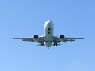 Air NZ B737