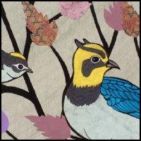 Bird Collage 3