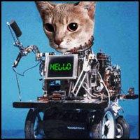 Cyber-kitty