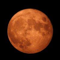 'Harvest Moon