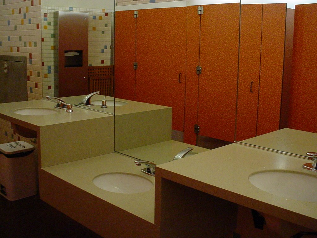Where are the well designed bathrooms experienceology for Well designed bathrooms