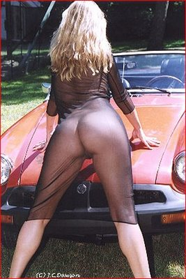 Blonde wearing see-thru outfit leaning on car