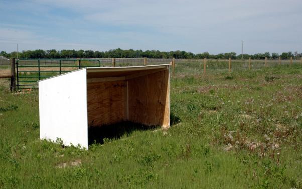 green, blue, brown: goat shelter