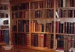 Goed gevulde boekenkast