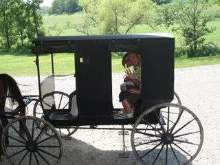 Amish buggy ride