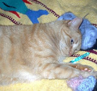 My kitty Gunter relaxing on some yarn, sprawled on top of a hook and pawing a crochet swatch