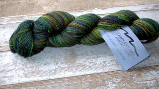 mountain colors bearfoot in Juniper.