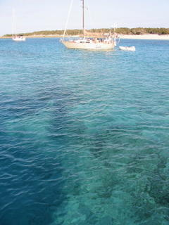fabulous snorkeling in the crystal blue water at Allans Cay