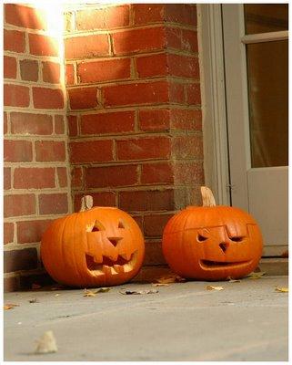 Pumpkins at VTS