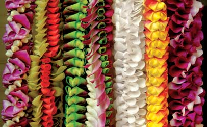 power of the flower on Lei Day