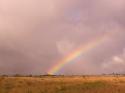 pretty rainbow just outside Haleiwa town