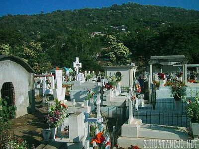 Bocote trees bloom on hillsides and in cemetary amid adorned gravesites