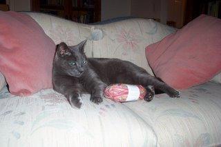 Jake with yarn