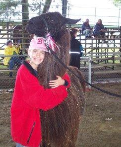 hug the llama