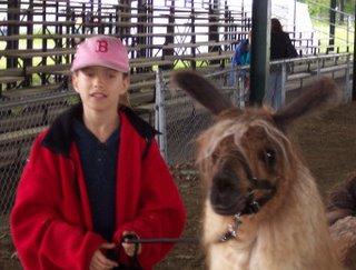walk the llama