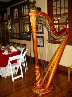 Southwest Michigan Wedding Harpist