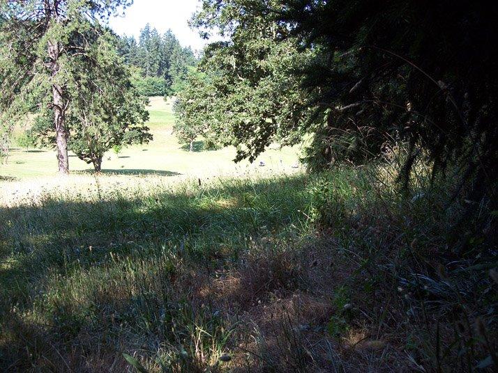 Behind Laurelwood Bored In Eugene Oregon