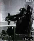 Chimpanzee NASA Gene Human Brain (Evolution Research: John Latter / Jorolat)