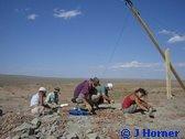 Parrot Lizard Plant Eater Psittacosaurus (Evolution Research: John Latter / Jorolat)