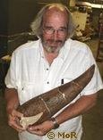 Jack Horner Museum Rockies Baby Triceratops Horn (Evolution Research: John Latter / Jorolat)