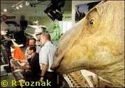Leonardo Dinosaur Montana Kodak Brachylophosaurus canadensis (Evolution Research: John Latter / Jorolat)