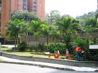 Flores y jardineros silvicultura paisajismo y jardiner a for Jardines residenciales