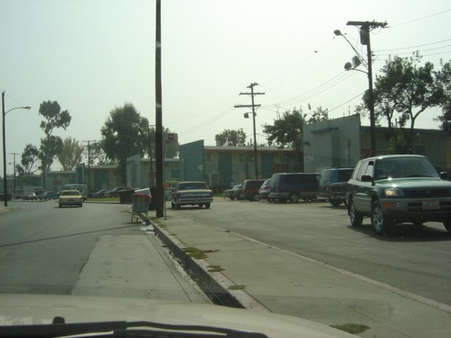 South Central Ghetto