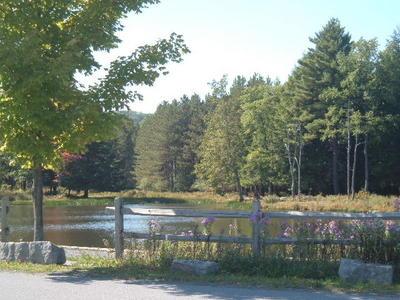 parker dam pond
