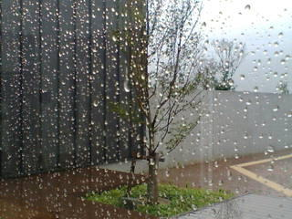 "De afbeelding ""http://photos1.blogger.com/blogger/6296/1372/1600/rainy1.jpg"" kan niet vertoond worden, omdat ze fouten bevat."