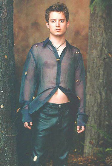 from Jeffery gay elijah wood