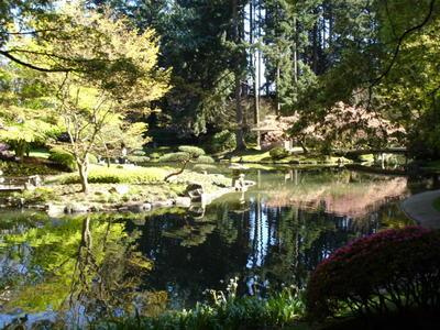 Nitobe Park à UBC (Vancouver, Colombie Britannique, Canada)