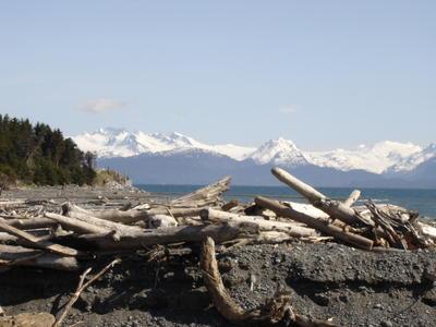 Homer, au bord de l'océan pacifique (Alaska, USA, Amérique du Nord)