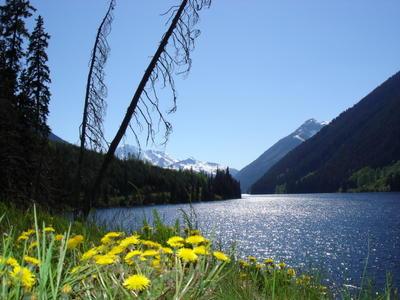 Paysage des rocheuses canadiennes (Montagnes rocheuses canadiennes en Colombie Britannique - Alberta)