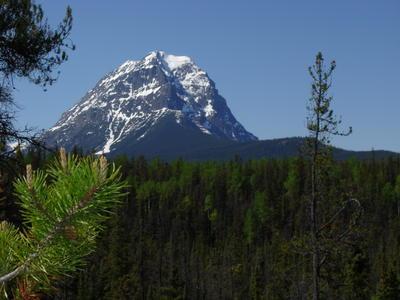 Dans la nature canadienne (Montagnes rocheuses canadiennes en Colombie Britannique - Alberta)