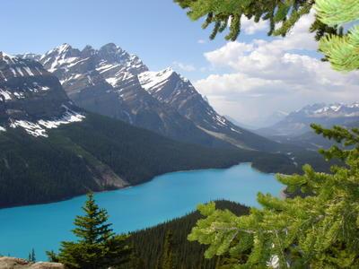 Le lac Peyto (Montagnes rocheuses canadiennes en Colombie Britannique - Alberta)